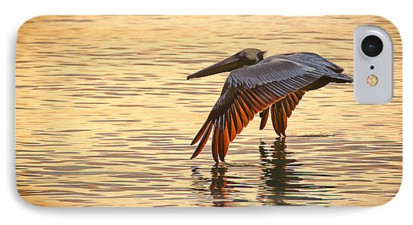 Pelican At Sunset IPhone Case