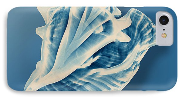 X-ray Of A Conch Shell IPhone Case by Mark Greenberg