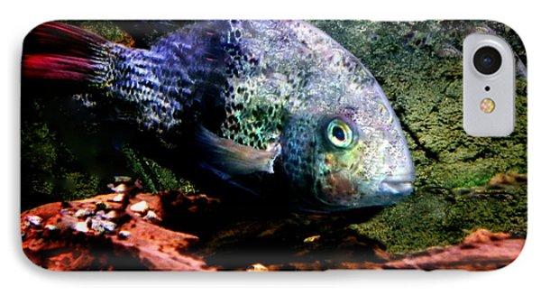 1 Fish Living In Denmark Phone Case by Colette V Hera  Guggenheim
