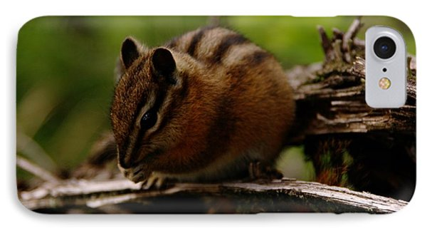 A Little Chipmunk Phone Case by Jeff Swan