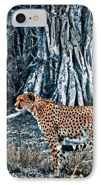 Alert Cheetah IPhone Case by Darcy Michaelchuk