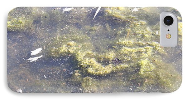 Algae Bloom In A Pond Phone Case by Photo Researchers, Inc.