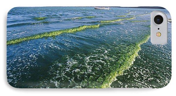 Algal Bloom Phone Case by Alexis Rosenfeld