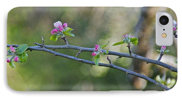 Apple Blossoms Phone Case by Sean Griffin