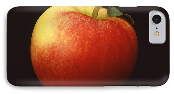 Apple IPhone Case by Mark Greenberg