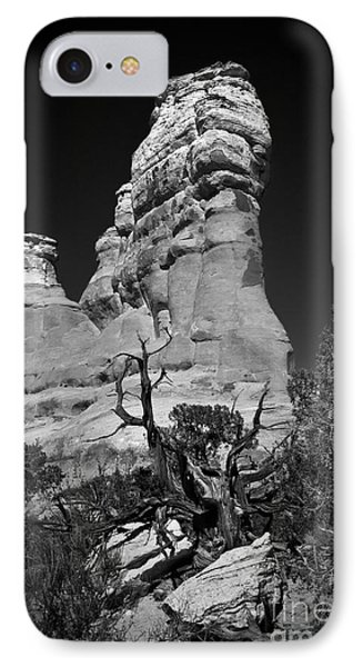 Arches National Park Bw IPhone Case by Larry Carr