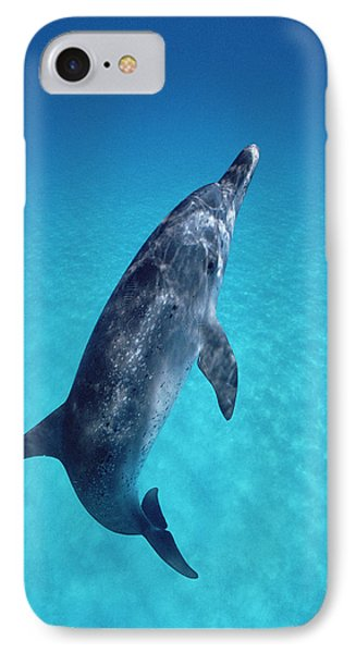 Atlantic Spotted Dolphin Portrait Phone Case by Flip Nicklin