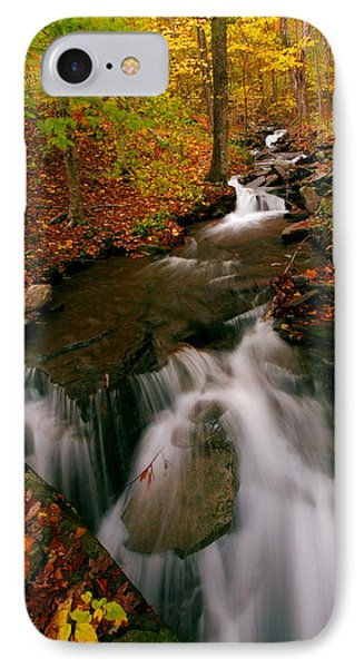 Autumn In New York IPhone Case by Neil Shapiro