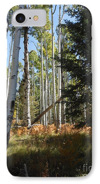 IPhone Case featuring the photograph Autumn Shadows by Fred Wilson