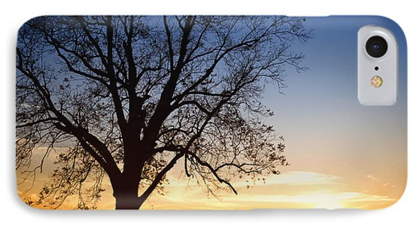 Bare Tree At Sunset Phone Case by Skip Nall
