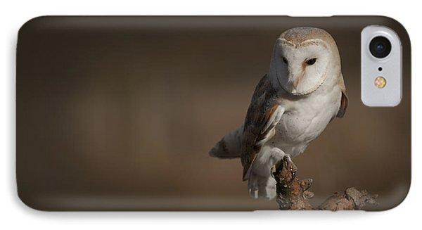 Barn Owl Phone Case by Andy Astbury