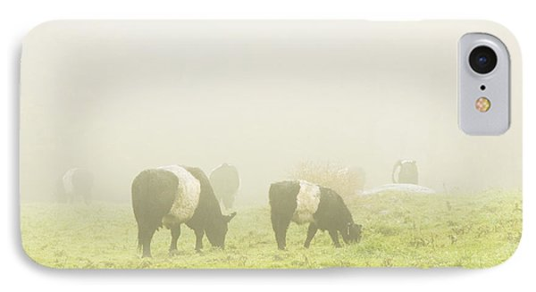 Belted Galloway Cows Grazing On Foggy Farm Field Maine Phone Case by Keith Webber Jr