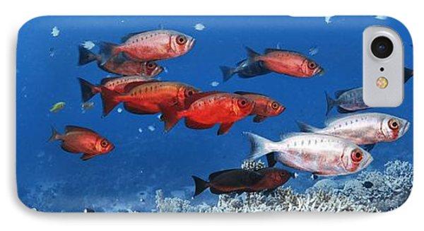Bigeye Fish Phone Case by Alexander Semenov