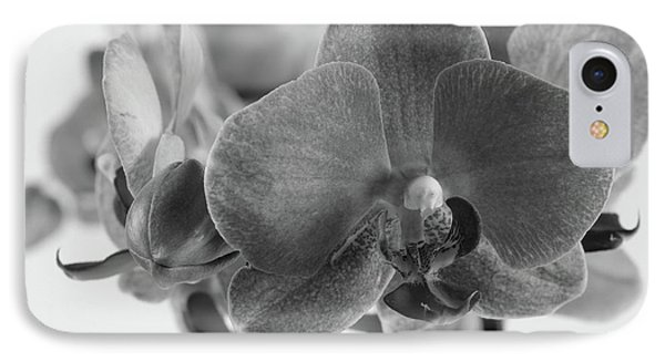 Black And White Orchid IPhone Case by Dariusz Gudowicz