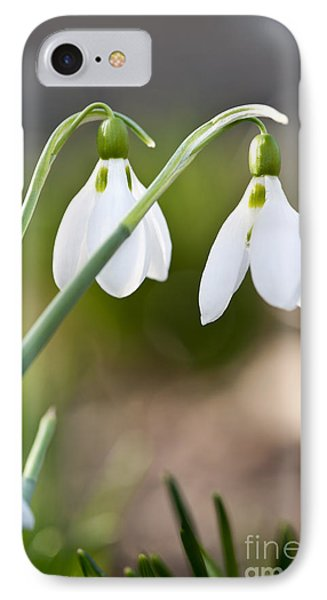 Blooming Snowdrops IPhone Case