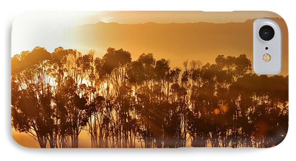 IPhone Case featuring the photograph Blue Gum Trees by Werner Lehmann