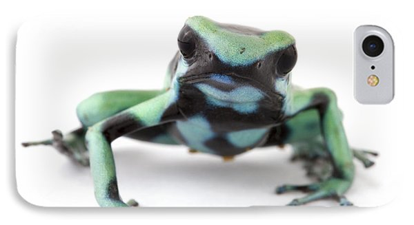 Blue Poison Dart Frog Barbilla Np Costa Phone Case by Piotr Naskrecki