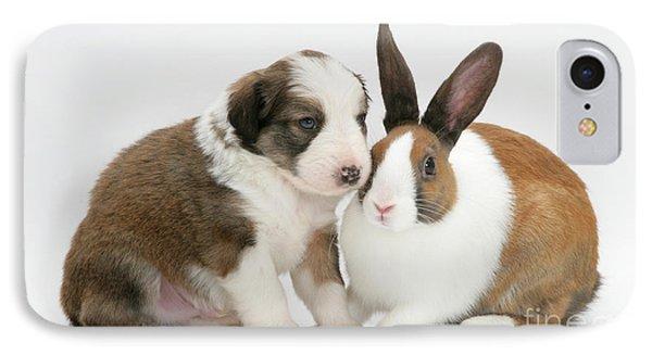 Border Collie Pup With Dutch Rabbit Phone Case by Jane Burton