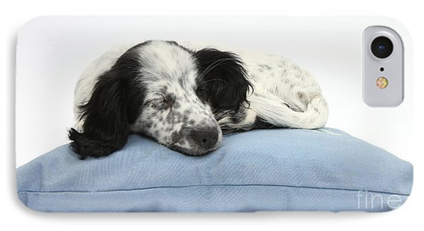 Border Collie X Cocker Sleeping Puppy Phone Case by Mark Taylor