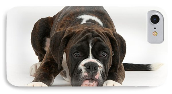 Boxer Pup Phone Case by Mark Taylor