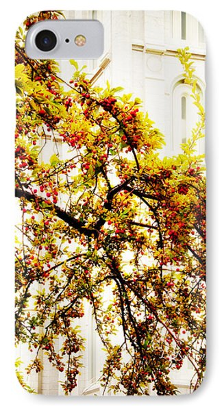 Branch Of Heaven Phone Case by La Rae  Roberts