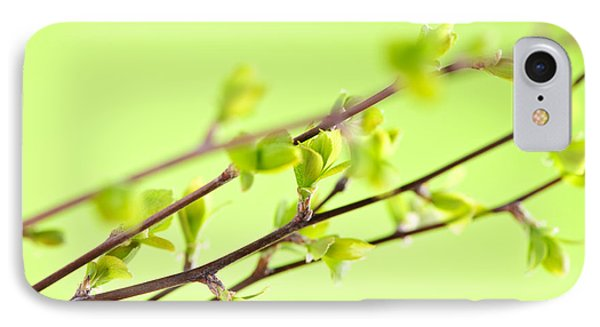 Branches With Green Spring Leaves Phone Case by Elena Elisseeva
