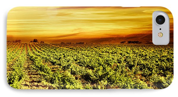 Bright Sunset At Vineyard Phone Case by Anna Om