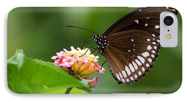Butterfly IPhone Case by Fotosas Photography