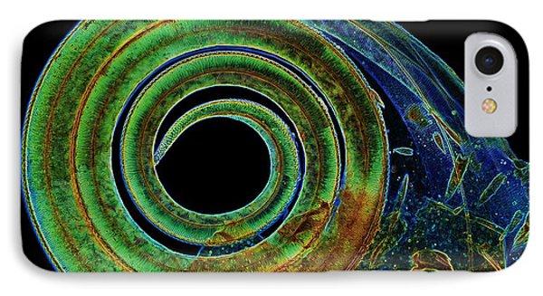 Butterfly Proboscis, Light Micrograph IPhone Case
