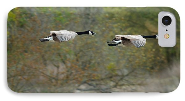 IPhone Case featuring the photograph Canada Geese by Doug Herr