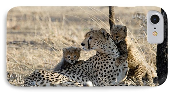 Cheetah Mother And Cubs Phone Case by Gregory G. Dimijian, M.D.