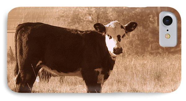 IPhone Case featuring the photograph Cow by France Laliberte