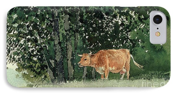 Cow In Pasture IPhone 7 Case