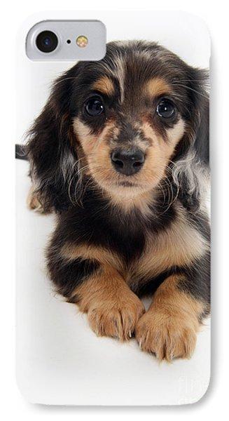 Dachshund Pup Phone Case by Jane Burton