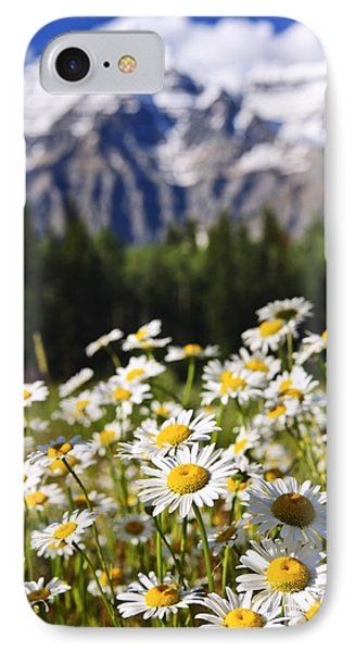 Daisies At Mount Robson Provincial Park Phone Case by Elena Elisseeva