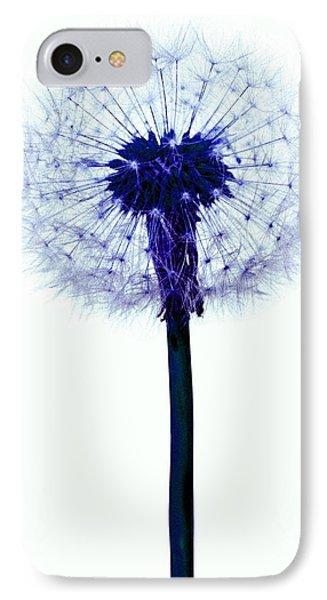 Dandelion Seed Head Phone Case by Victor De Schwanberg