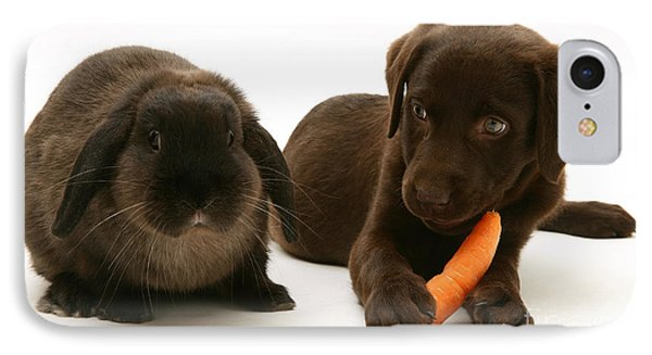 Dog Steals Rabbits Carrot IPhone Case