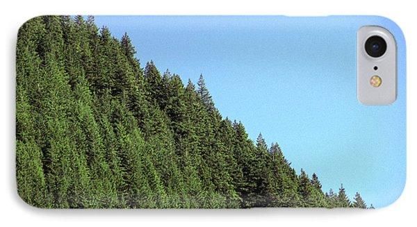 Douglas Fir Forest, British Columbia, Canada Phone Case by Kaj R. Svensson