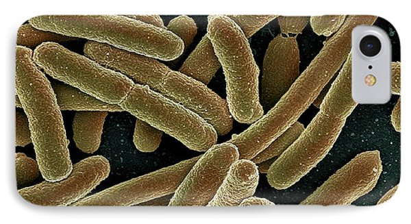 E. Coli Bacteria, Sem Phone Case by Ami Images