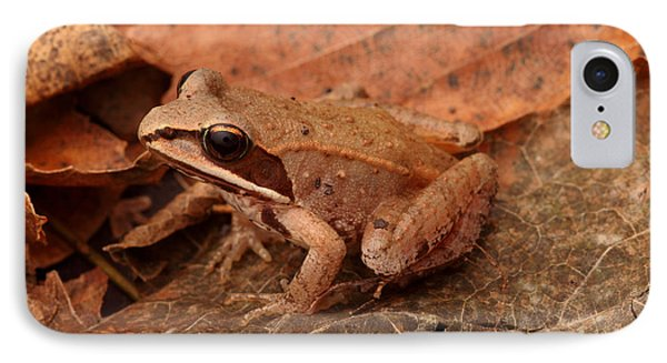 Eastern Wood Frog Phone Case by Ted Kinsman