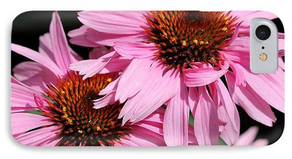 Echinacea Purpurea Or Purple Coneflower Phone Case by J McCombie