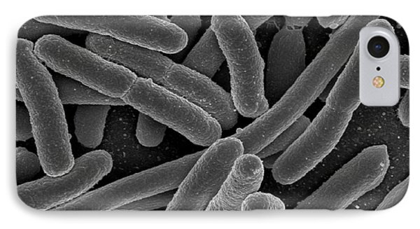 Escherichia Coli Bacteria, Sem Phone Case by Science Source