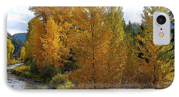 Fall Colors IPhone Case by Steve McKinzie