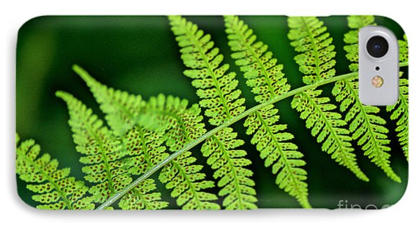 IPhone Case featuring the photograph Fern Seed by Sharon Elliott