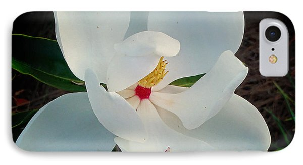 IPhone Case featuring the photograph White Florida Magnolia by Nava Thompson