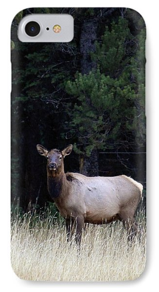 IPhone Case featuring the photograph Forest Elk by Steve McKinzie