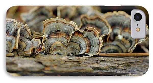 Fungus IPhone Case
