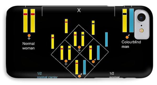 Genetics Of Colour Blindness, Diagram Phone Case by Francis Leroy, Biocosmos