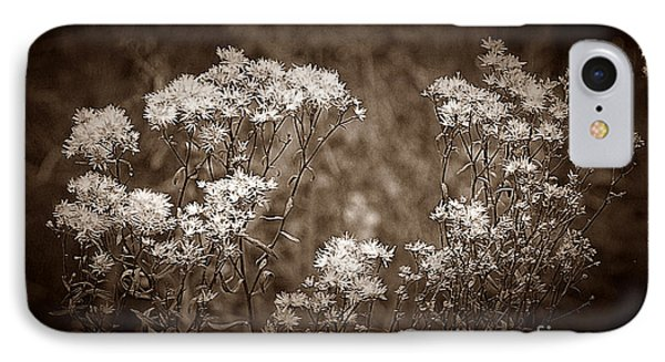 Going To Seed Phone Case by Judi Bagwell