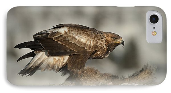 Golden Eagle Phone Case by Andy Astbury